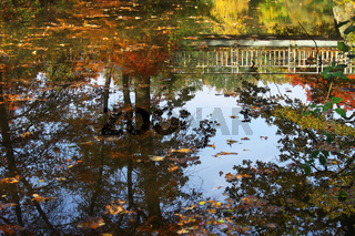 Herbst am See