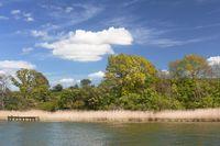Ufer der Schlei bei Missunde