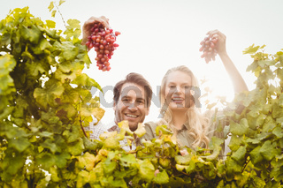 Young happy couple holding grapes
