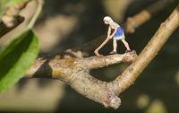 woman lumberjack chopping branch of tree