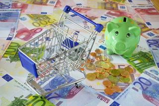 Einkaufswagen auf Eurogeldscheinen mit Sparschwein