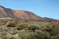 Landscape on volcano Teide on the Canary island of Tenerife