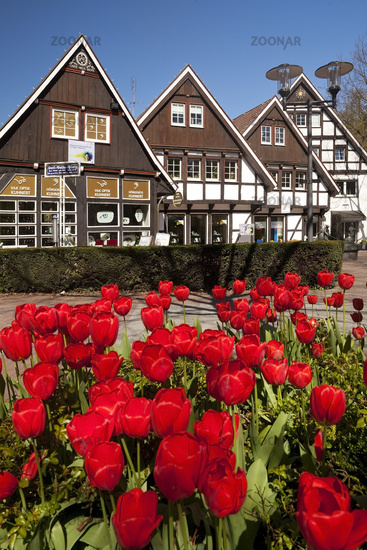 half-timbered houses at Karl Volke square in spring, Bad Sassendorf, North Rhine-Westphalia, Germany