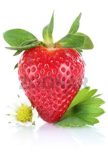 Erdbeere Beere Frucht mit Blätter Freisteller freigestellt isoliert