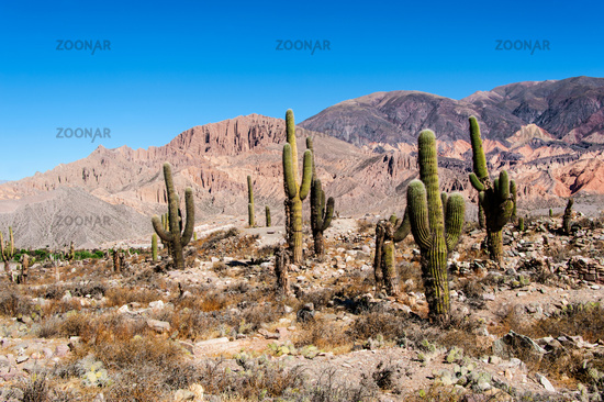 Colorful valley of Quebrada de Humahuaca, central Andes Altiplano, Argentina