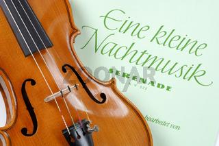 Geige oder Violine