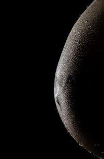 Bauch einer schwangeren Frau