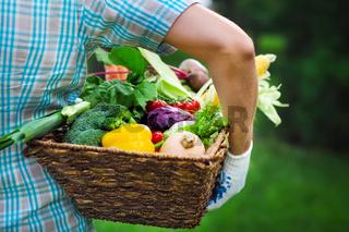Wooden box filled fresh vegetables