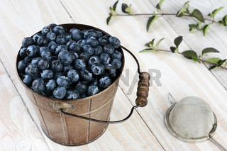 Blueberry Bucket With Leaves