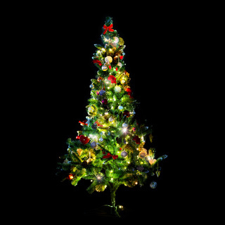 beautiful decorated and illuminated christmas tree