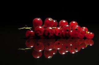 Rote Johannisbeere gespiegelt auf schwarz