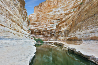 Ein Avdat Canyon, continue the journey