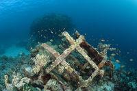 Ueberreste der Jacques Cousteau Unterwasserstation Precontinent II, Sudan