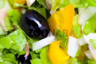 Assorted salad of green leaf lettuce with squid and black olives
