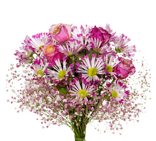 Bouquet of pink flowers  isolated on white.