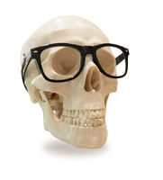skull with glasses, isolated