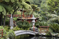 Japanese garden on maadeira island
