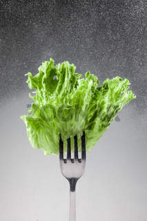 Green lettuce leaves on a fork