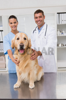Vet coworker examining dog