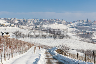 Hills and vineyards under the snow.