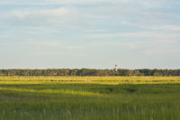 Virginia Wetlands and Lighthouse