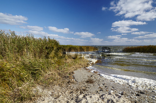 Saaler Bodden bei Sturm, Halbinsel Fischland, zwischen Ahrenshoop und Wustrow, Mecklenburg-Vorpommern, Deutschland