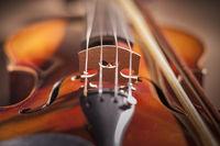 Violin close up