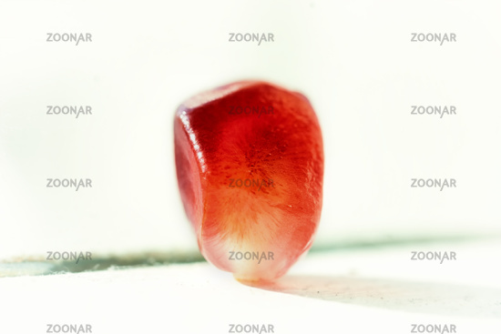One pomegranate seed