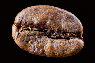Coffee bean isolated on black background