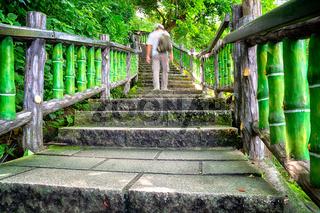 Mountain Trail in Taipei - Taiwan
