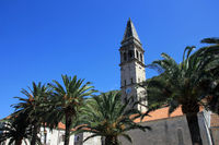 Church spire with palms in Montenegro