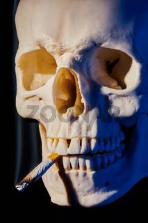Schädelknochen mit Zigarette