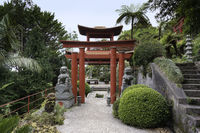 Japanese garden on maadeira island with pagoda