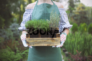 Woman holding a box with plants in her hands in garden center