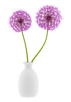 purple flowers in vase isolated on white background. 3d illustration