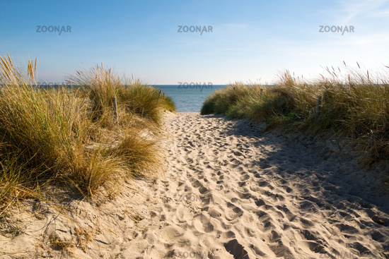 Beach path at island Ruegen