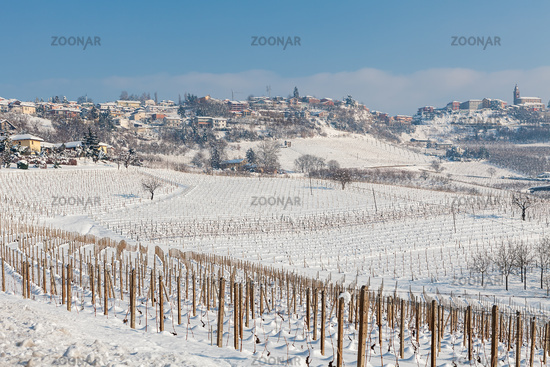 Vineyards covered with snow in Italy.