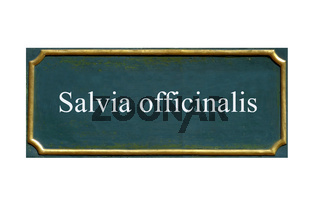schild Salbei