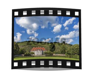 Schloss Wackerbarth   Castle Wackerbarth