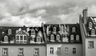 Altstadtdaecher