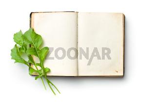 arugula leaves on old book