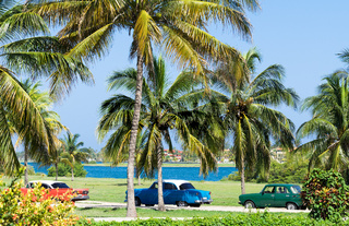 Havanna Kuba - Oldtimer parken am Strand unter Palmen