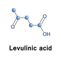 Molecule of levulinic acid