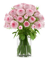 bouquet of pink roses in glass vase isolated on white background