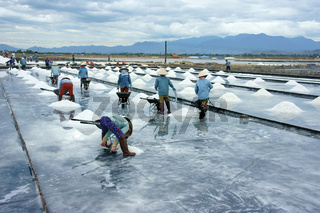Asia worker, salt marsh, working