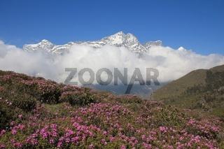 Spring scene in the Everest National Park