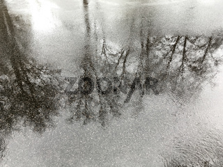 reflection in the puddle on the pavement