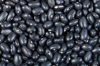 many raw Black turtle beans