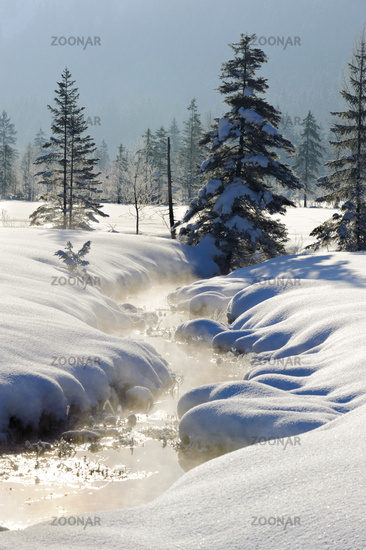 winter landscape in Bavaria with little stream