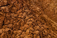Closeup of Drought red orange sand stone rock formation in Tatacoa desert, Huila